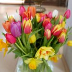 Den Glauben in Frühlingsfarben bezeugen – Betrachtung zur Botschaft